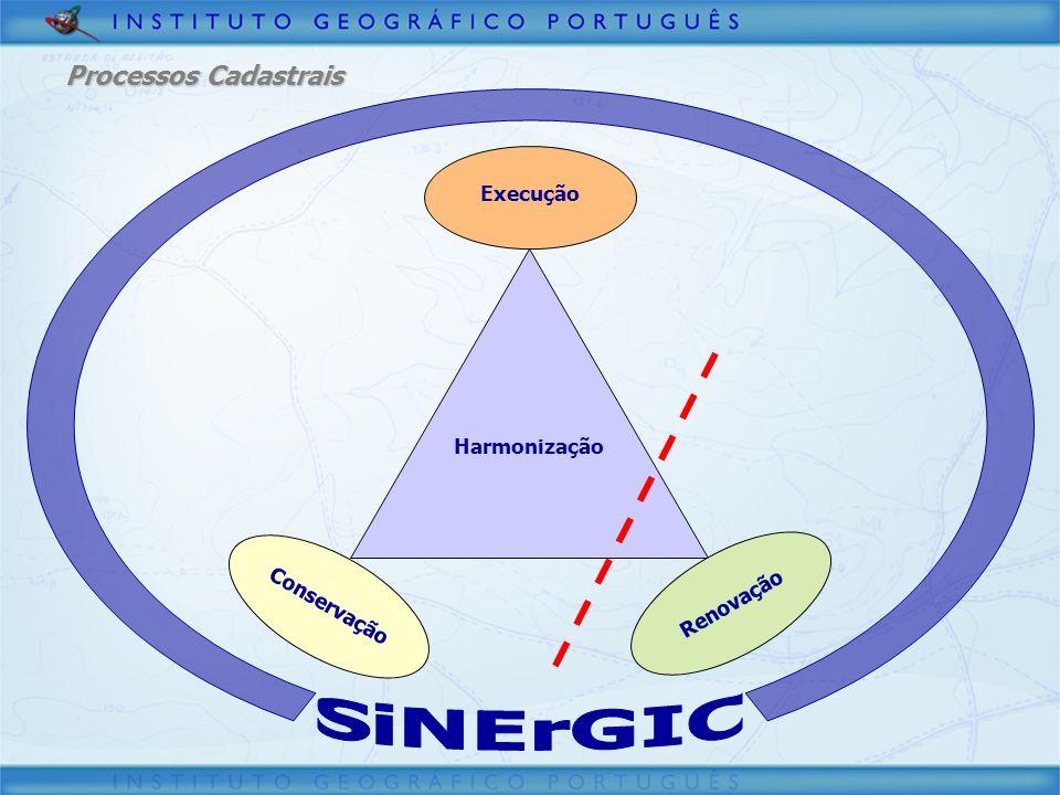 SiNErGIC Processos Cadastrais Execução Harmonização Conservação