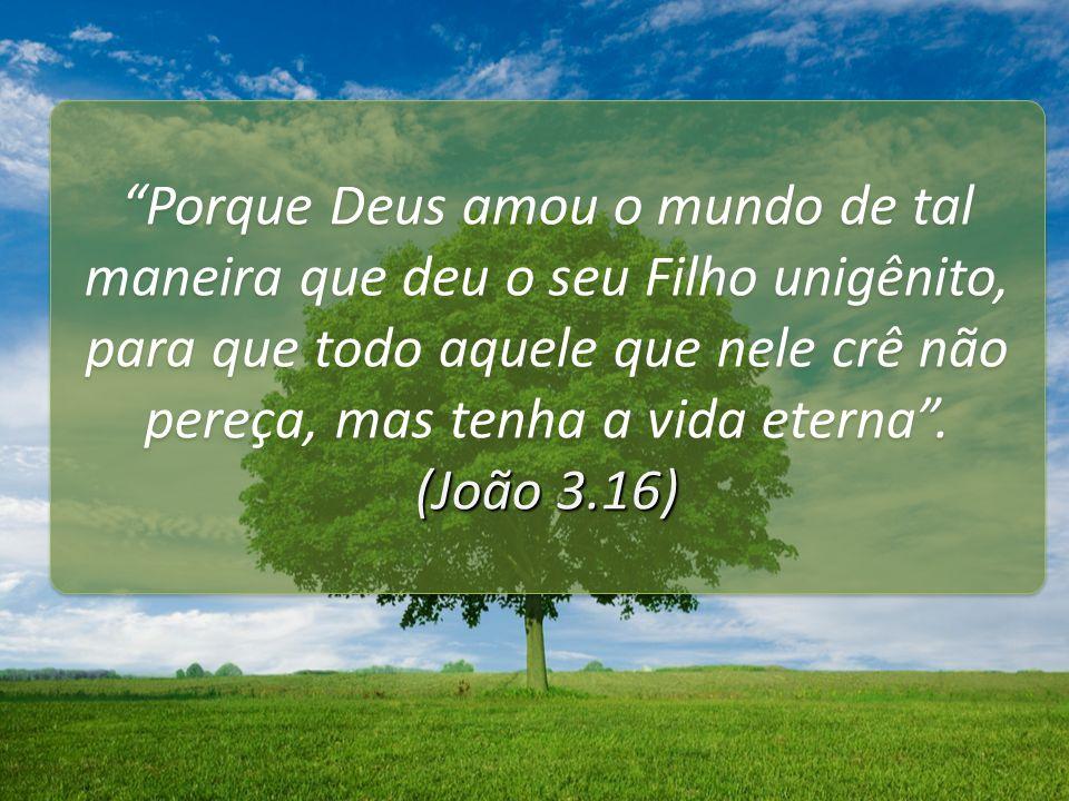 Porque Deus amou o mundo de tal maneira que deu o seu Filho unigênito, para que todo aquele que nele crê não pereça, mas tenha a vida eterna .