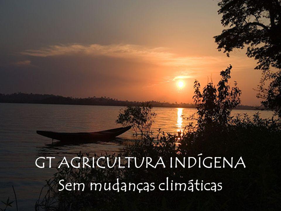GT AGRICULTURA INDÍGENA Sem mudanças climáticas