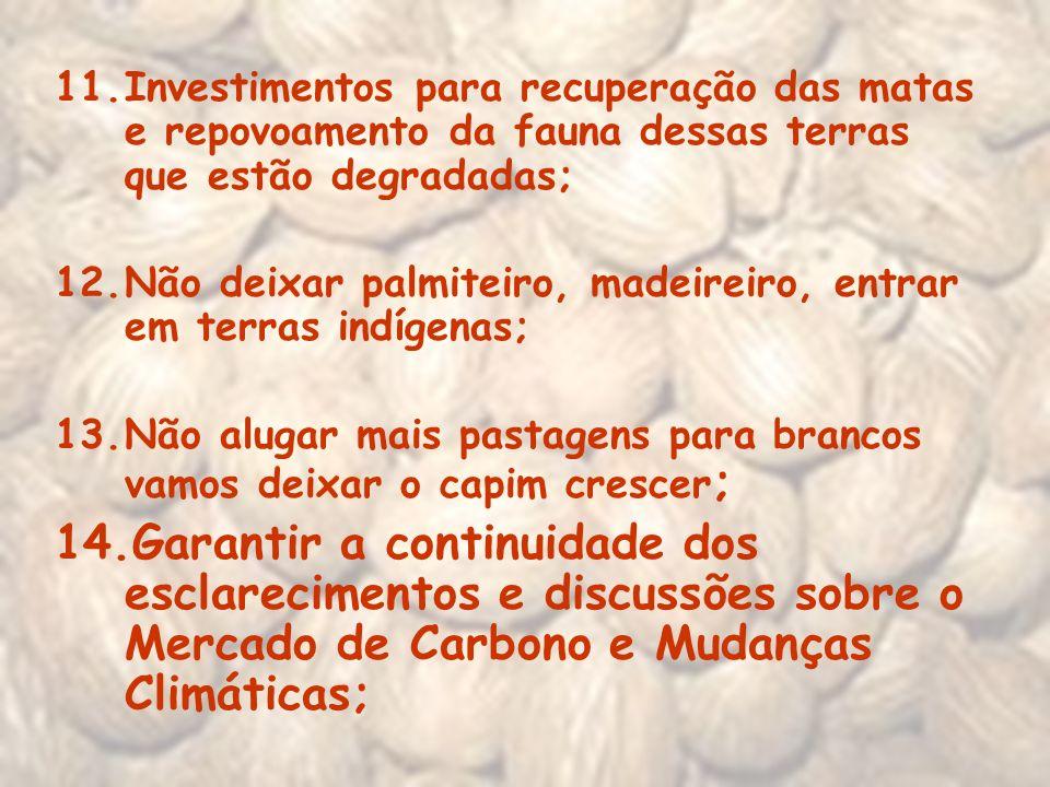 Investimentos para recuperação das matas e repovoamento da fauna dessas terras que estão degradadas;
