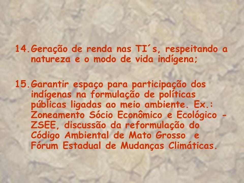 Geração de renda nas TI´s, respeitando a natureza e o modo de vida indígena;