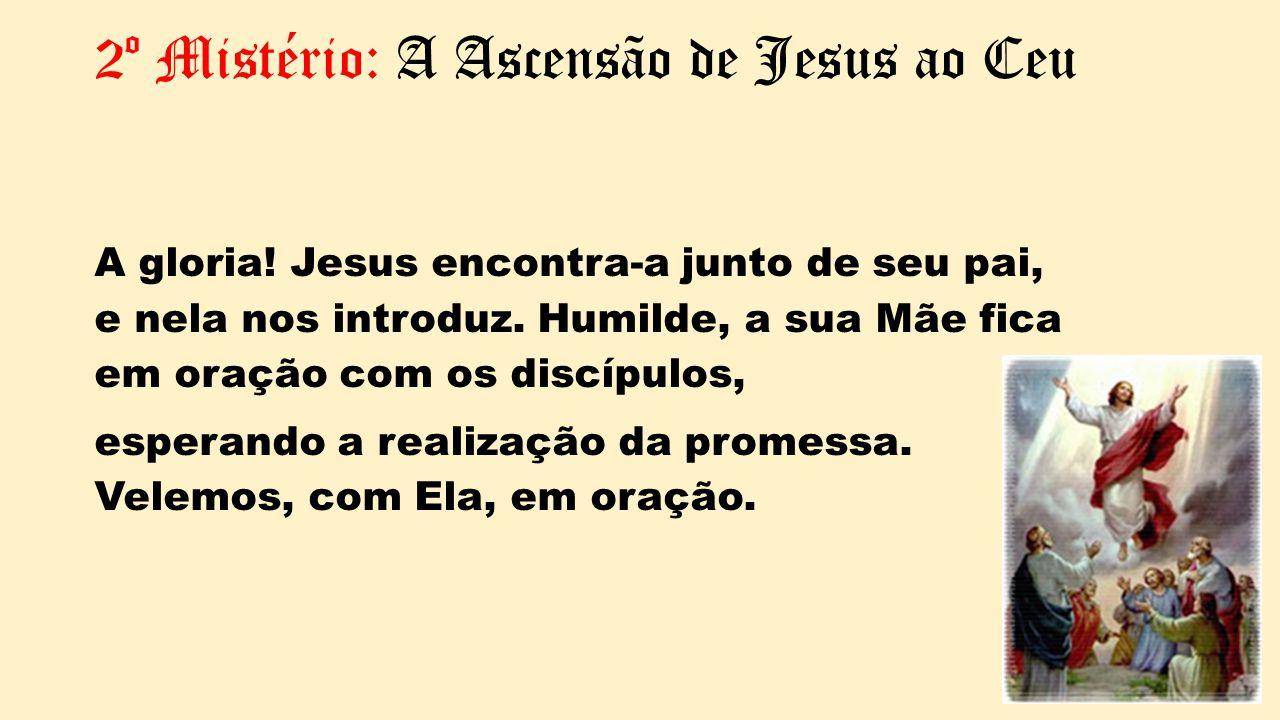 2º Mistério: A Ascensão de Jesus ao Ceu