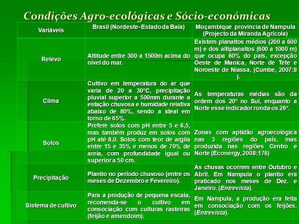 Condições Agro-ecológicas e Sócio-económicas