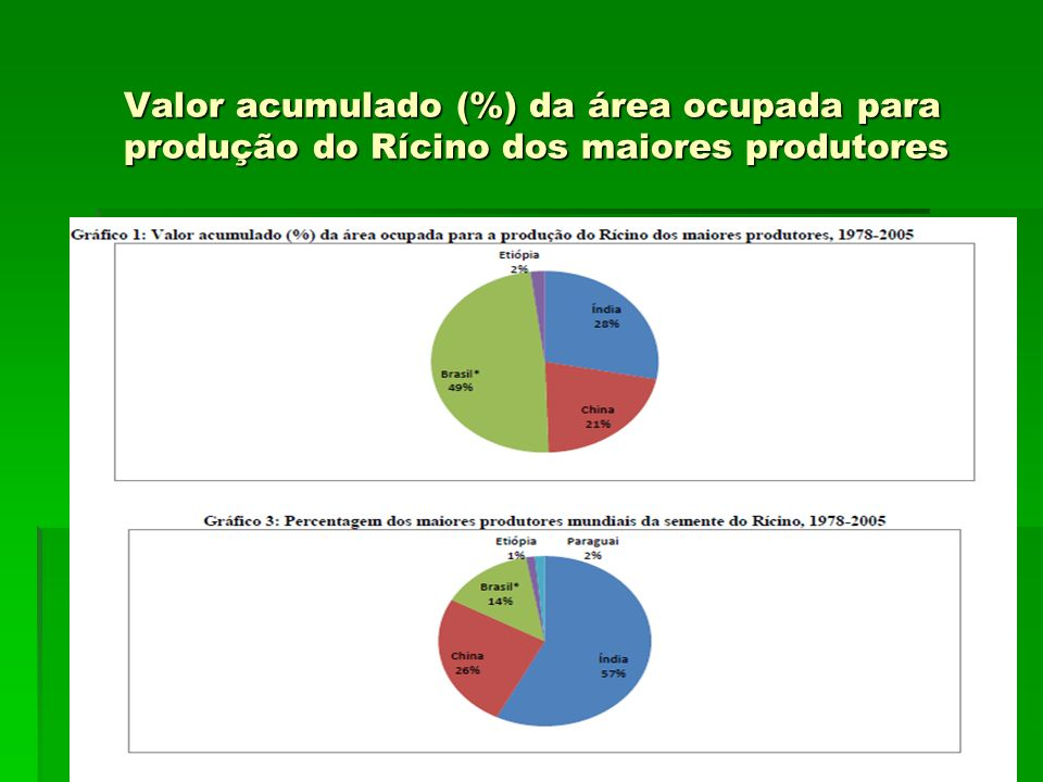 Valor acumulado (%) da área ocupada para produção do Rícino dos maiores produtores