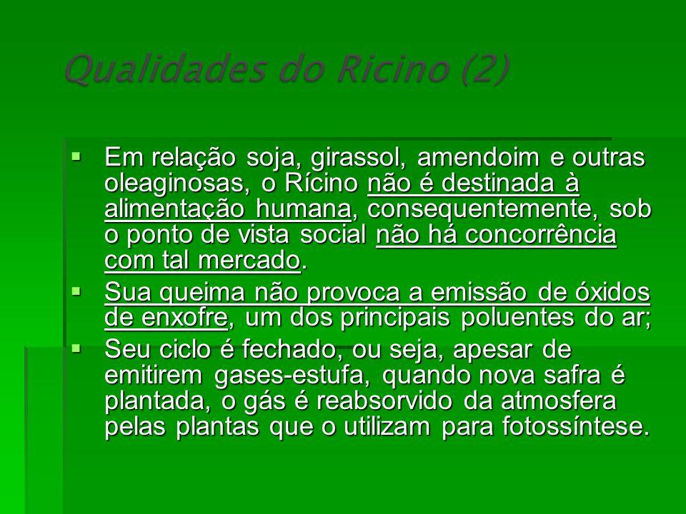 Em relação soja, girassol, amendoim e outras oleaginosas, o Rícino não é destinada à alimentação humana, consequentemente, sob o ponto de vista social não há concorrência com tal mercado.
