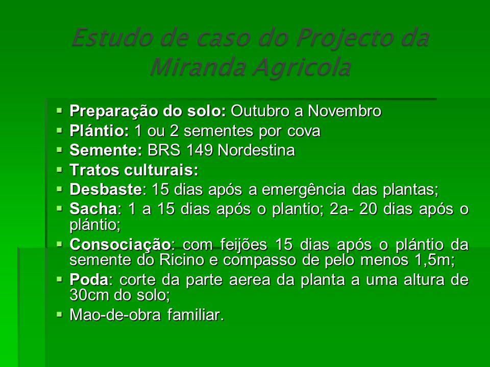 Preparação do solo: Outubro a Novembro