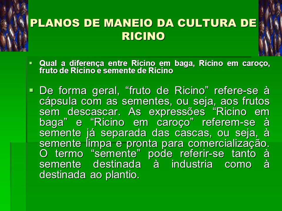 PLANOS DE MANEIO DA CULTURA DE RICINO