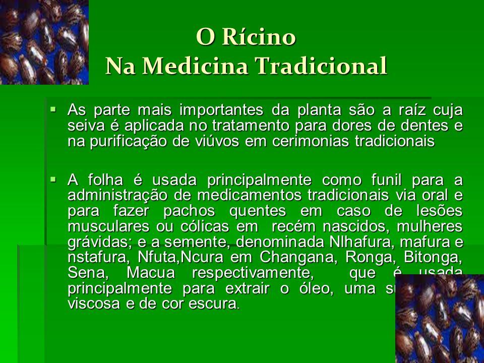 O Rícino Na Medicina Tradicional