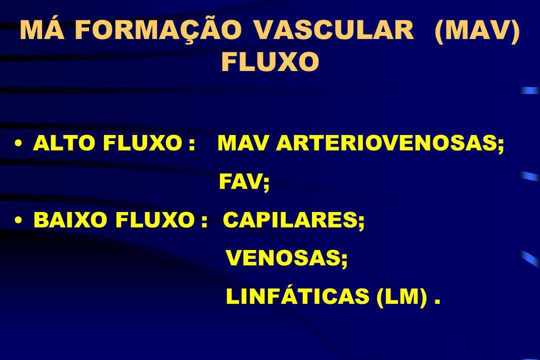 MÁ FORMAÇÃO VASCULAR (MAV) FLUXO