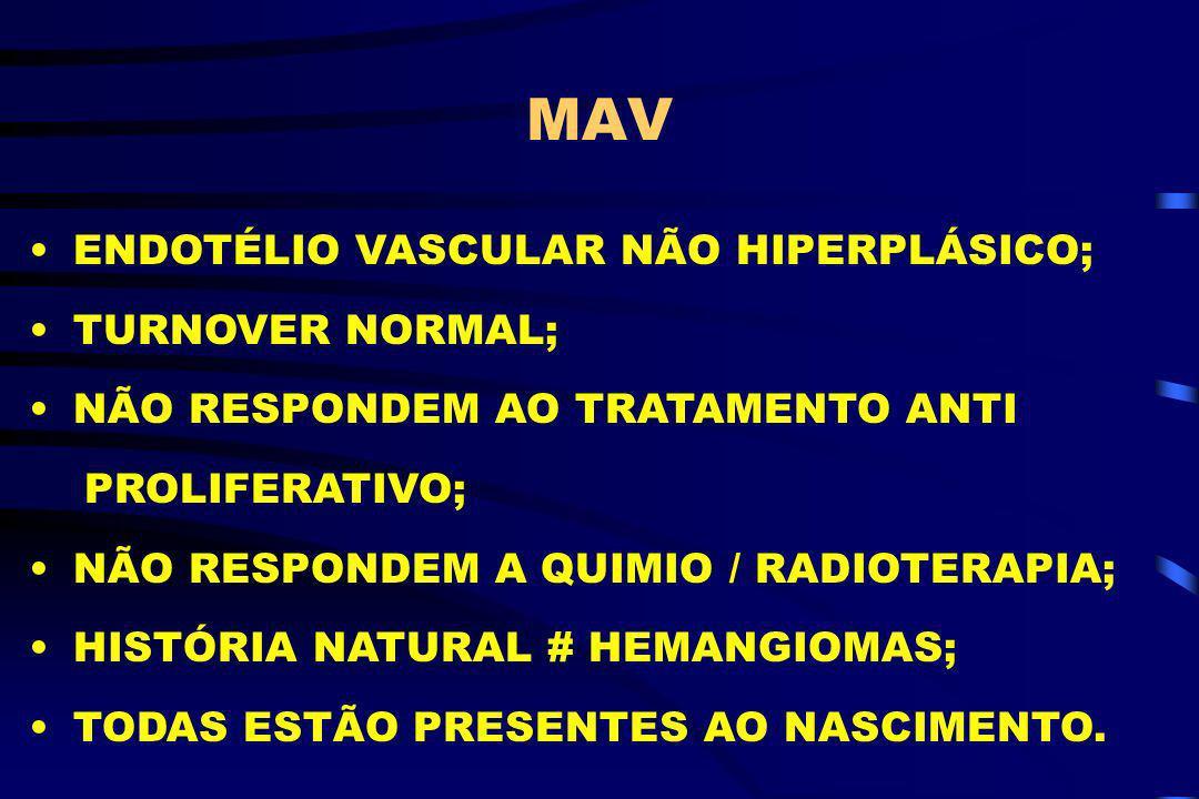 MAV ENDOTÉLIO VASCULAR NÃO HIPERPLÁSICO; TURNOVER NORMAL;