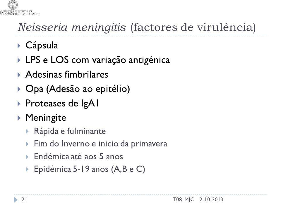 Neisseria meningitis (factores de virulência)