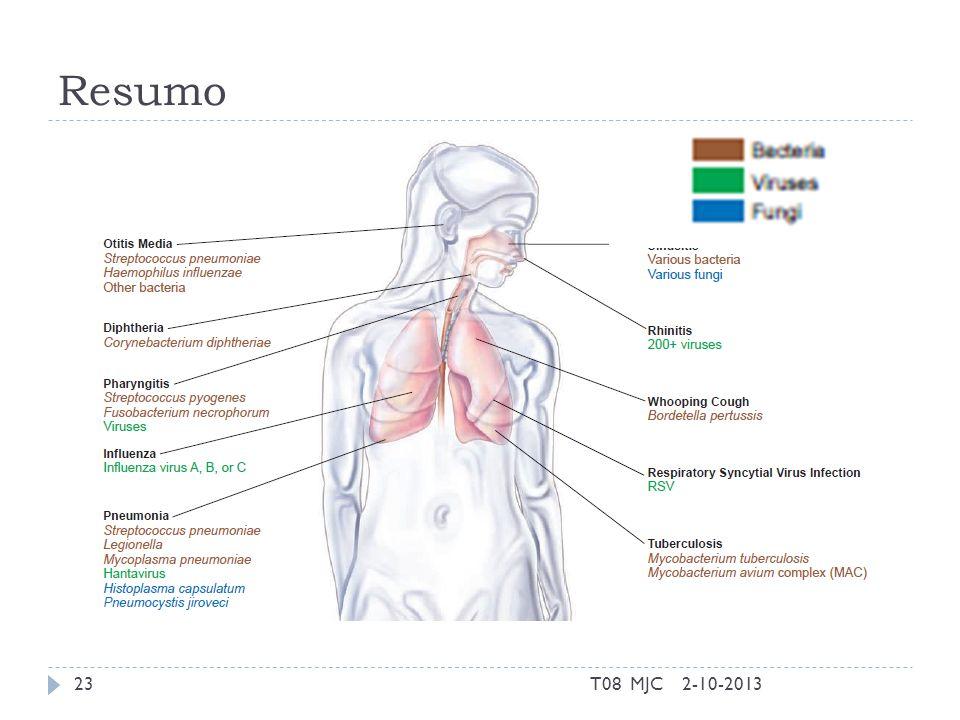 Resumo T08 MJC 2-10-2013