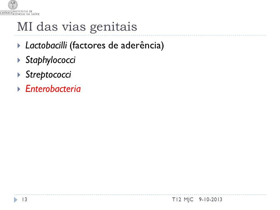 MI das vias genitais Lactobacilli (factores de aderência)