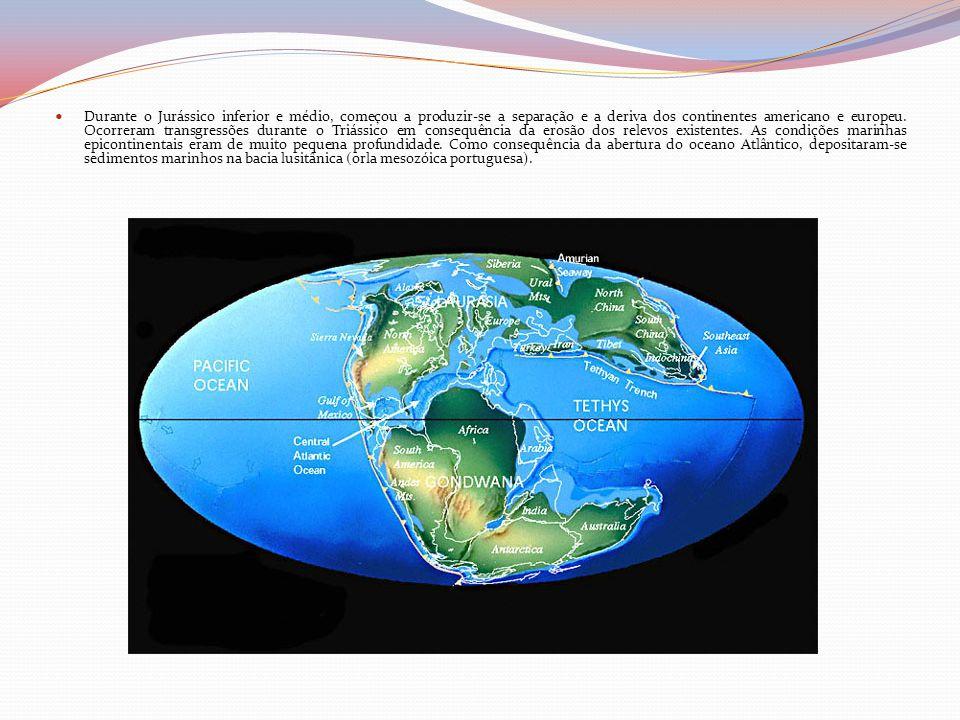 Durante o Jurássico inferior e médio, começou a produzir-se a separação e a deriva dos continentes americano e europeu.