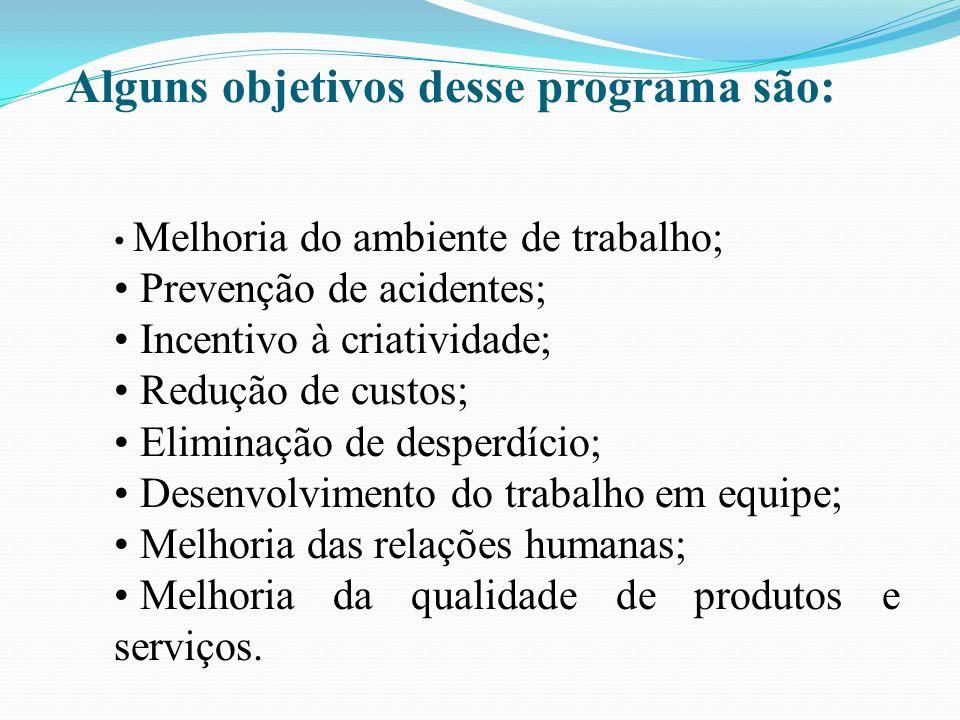 Alguns objetivos desse programa são: