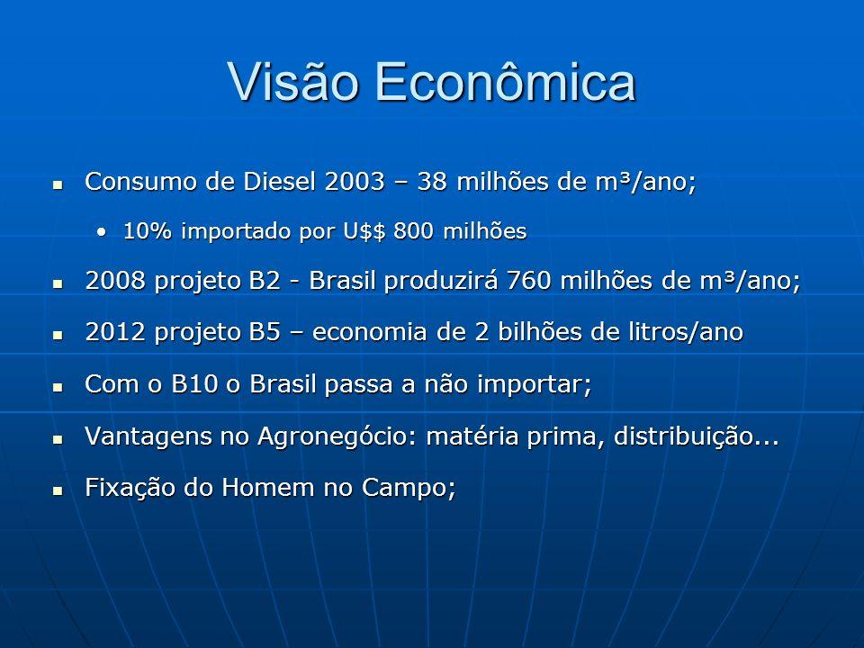 Visão Econômica Consumo de Diesel 2003 – 38 milhões de m³/ano;
