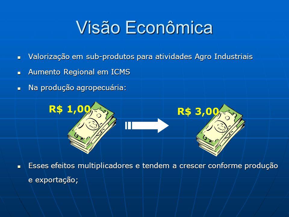 Visão Econômica Valorização em sub-produtos para atividades Agro Industriais. Aumento Regional em ICMS.