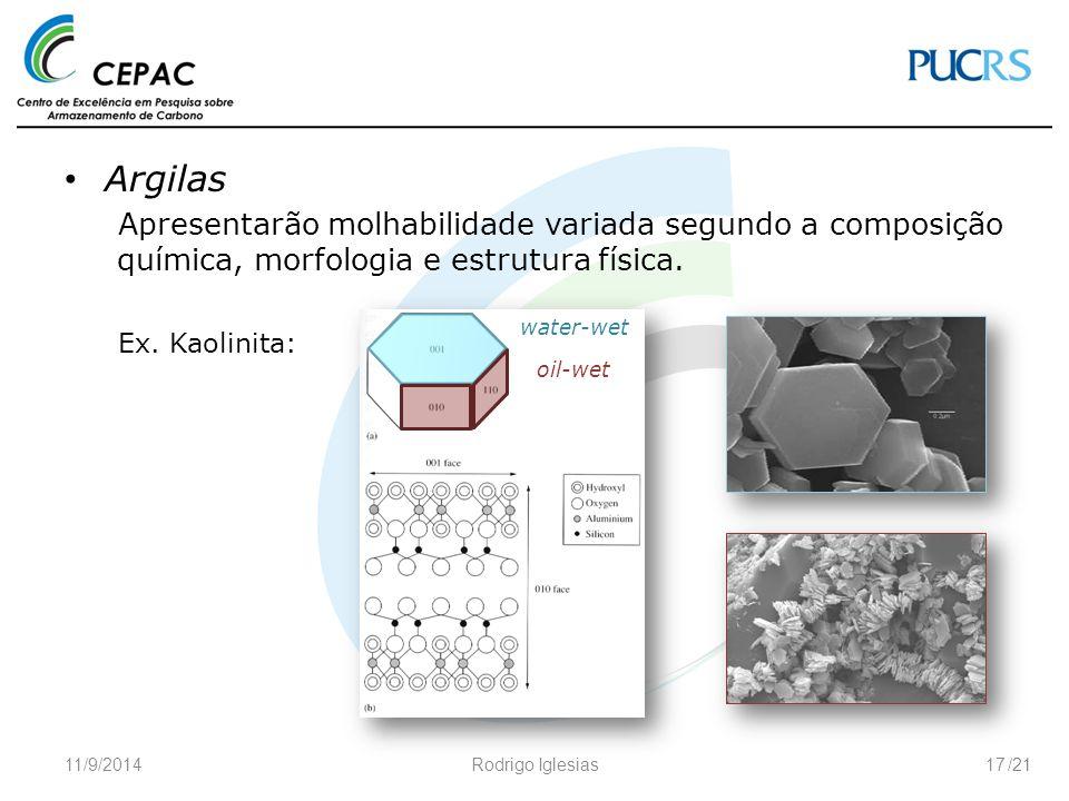 Argilas Apresentarão molhabilidade variada segundo a composição química, morfologia e estrutura física.