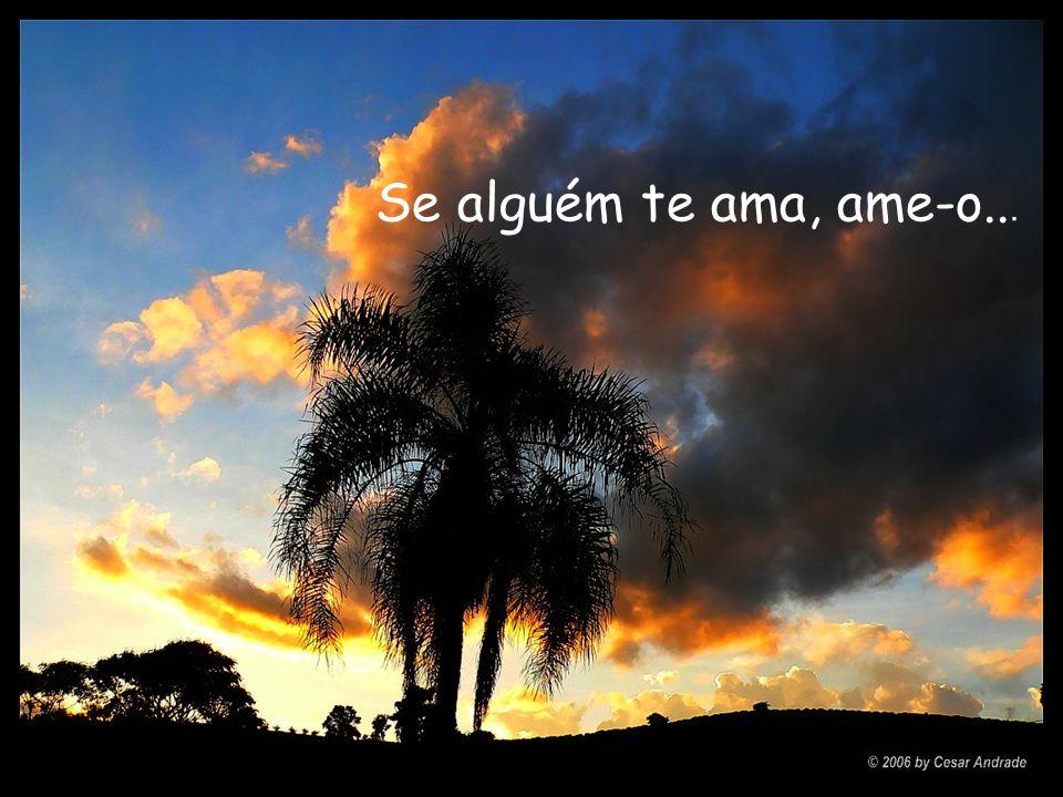 Se alguém te ama, ame-o...