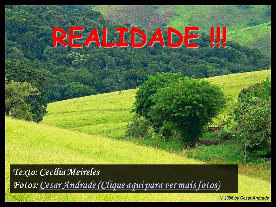 REALIDADE !!! Texto: Cecília Meireles