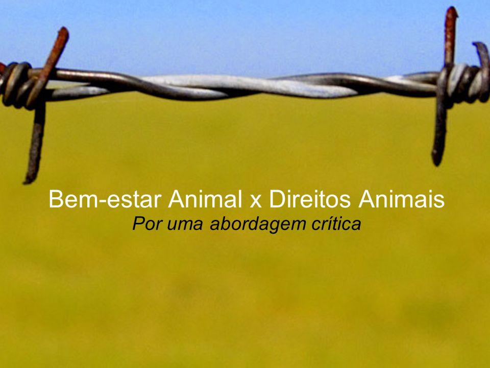 Bem-estar Animal x Direitos Animais Por uma abordagem crítica