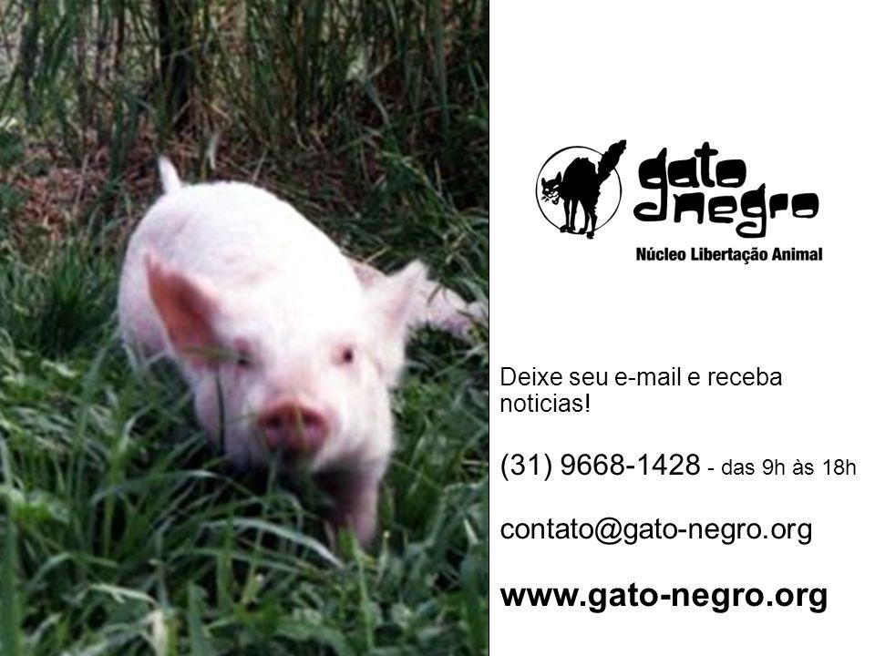www.gato-negro.org (31) 9668-1428 - das 9h às 18h