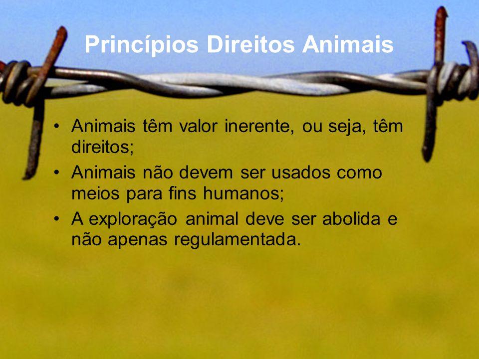 Princípios Direitos Animais