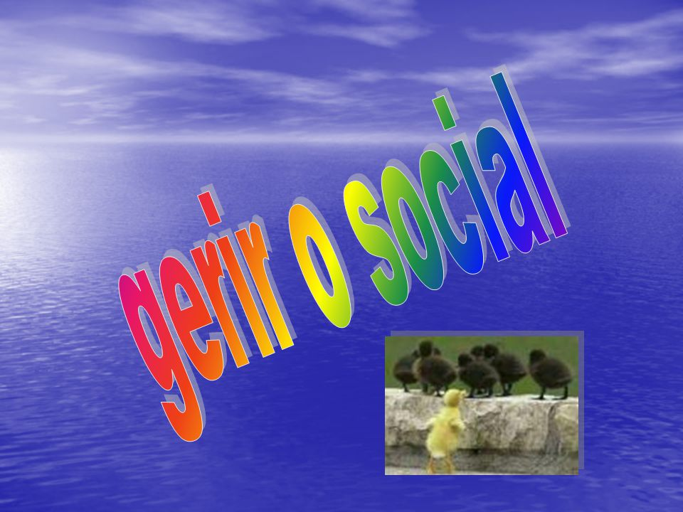 gerir o social