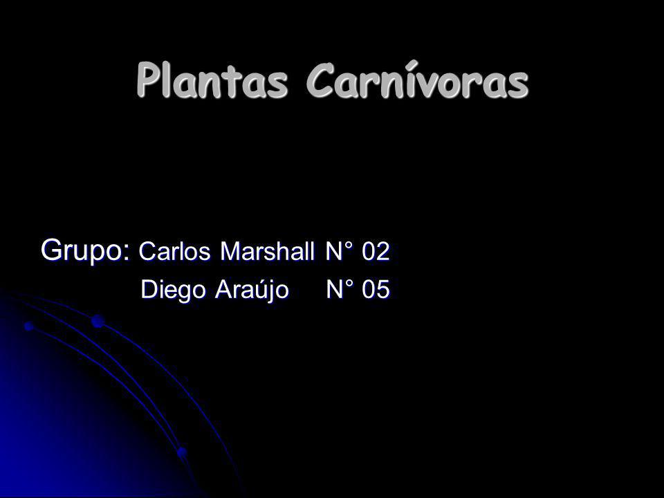 Plantas Carnívoras Grupo: Carlos Marshall N° 02 Diego Araújo N° 05