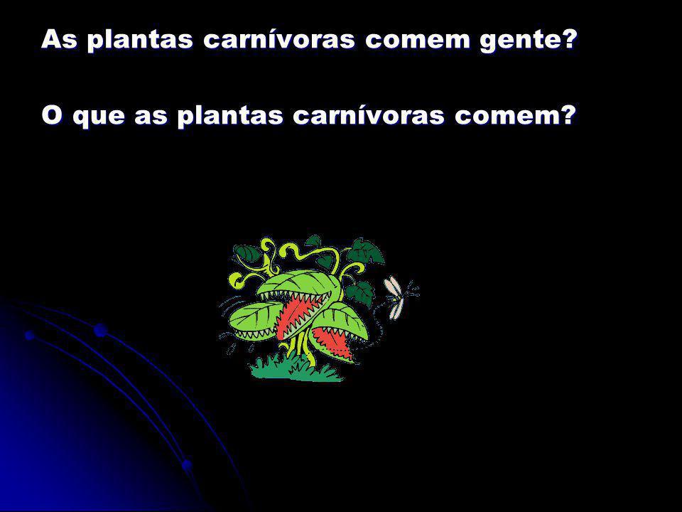 As plantas carnívoras comem gente