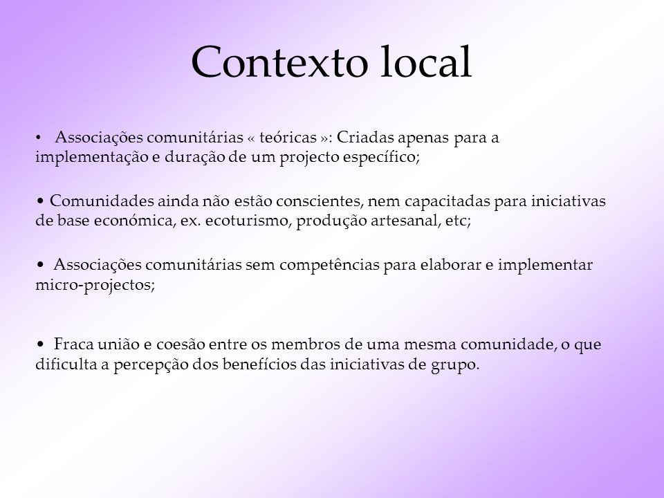 Contexto local Associações comunitárias « teóricas »: Criadas apenas para a implementação e duração de um projecto específico;