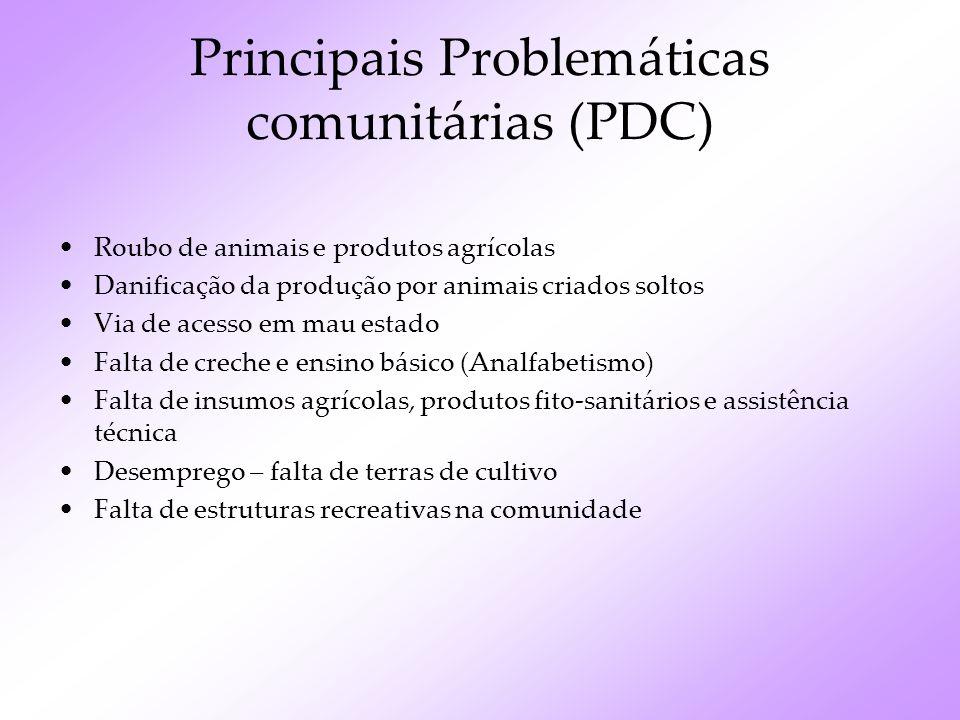 Principais Problemáticas comunitárias (PDC)