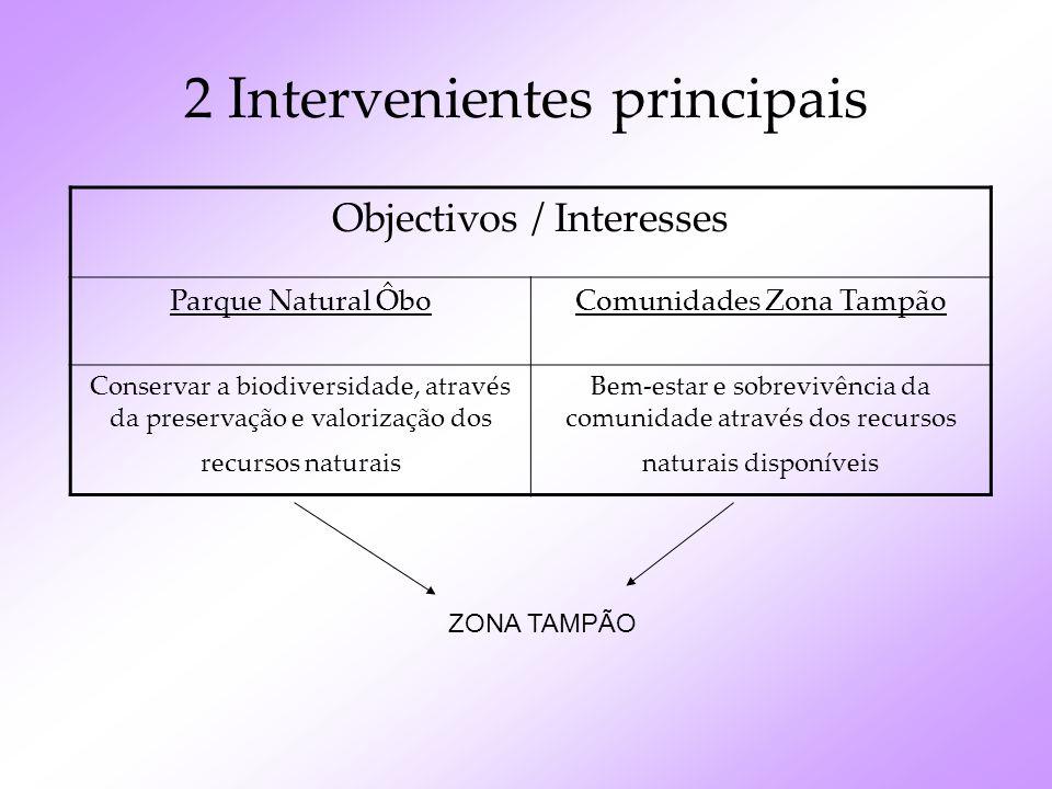 2 Intervenientes principais