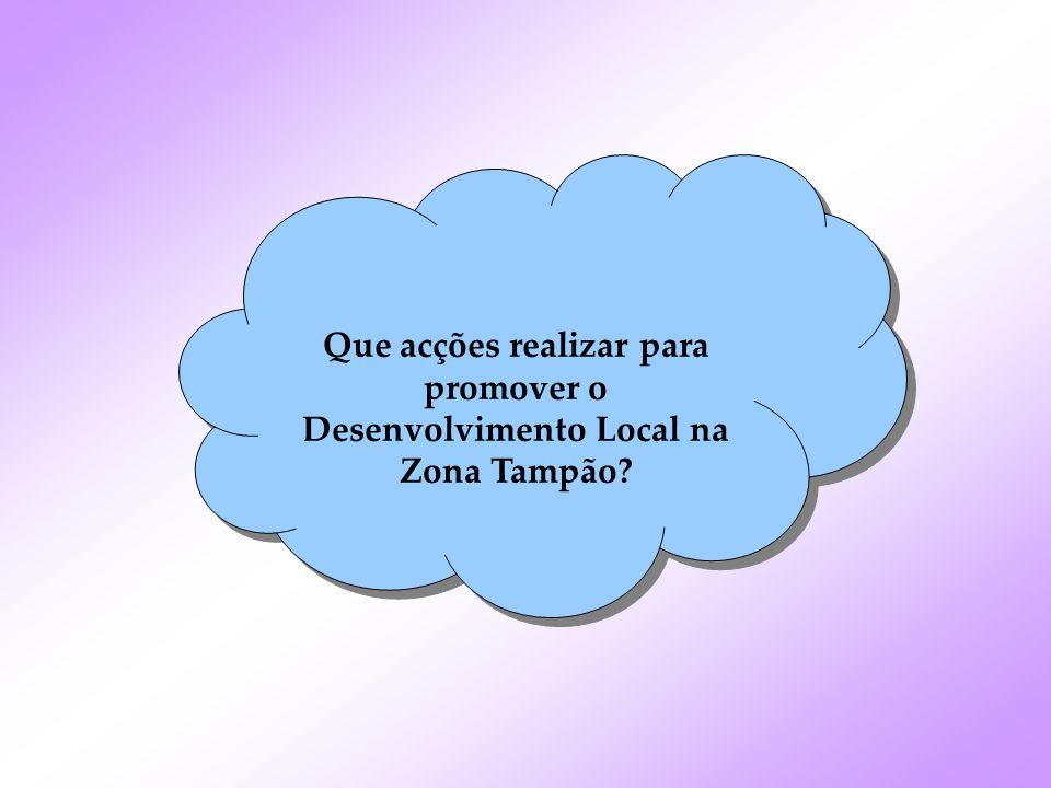 Que acções realizar para promover o Desenvolvimento Local na Zona Tampão