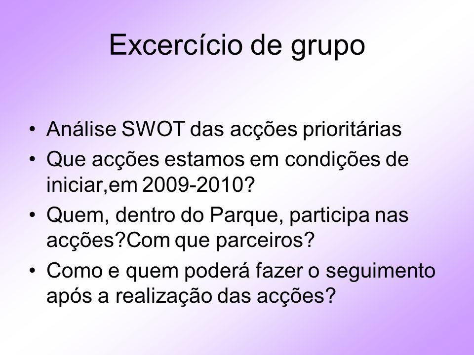 Excercício de grupo Análise SWOT das acções prioritárias