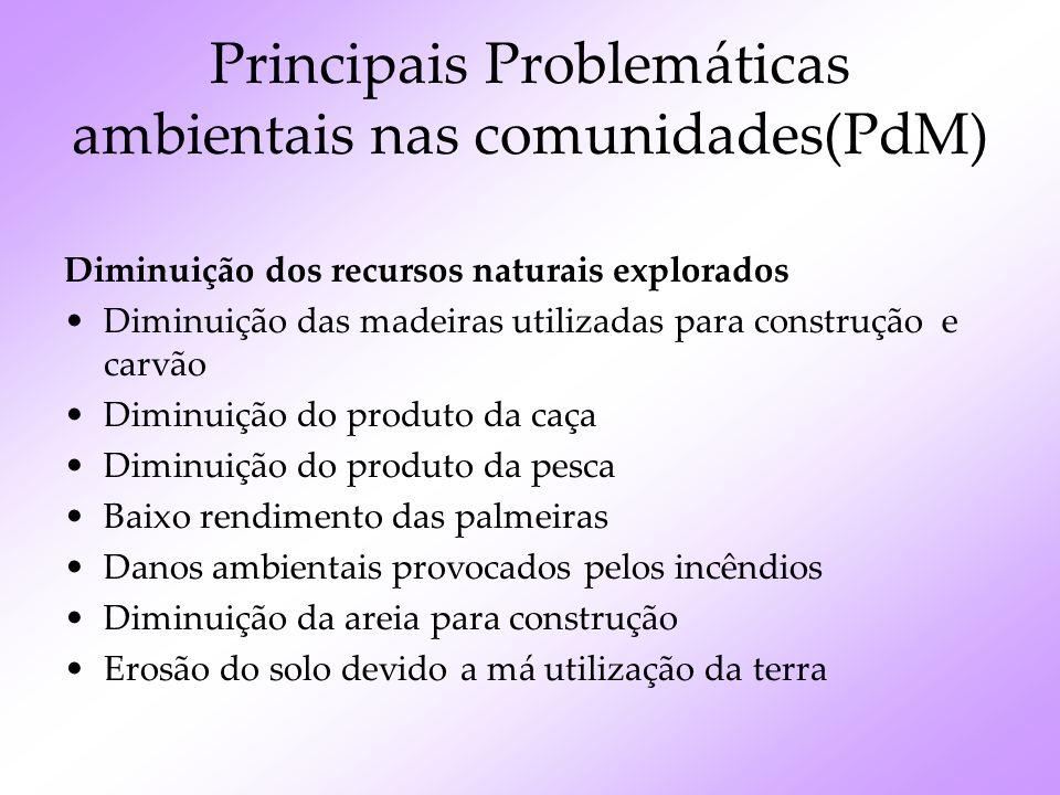 Principais Problemáticas ambientais nas comunidades(PdM)