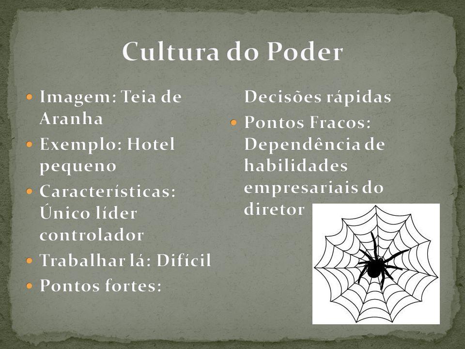 Cultura do Poder Imagem: Teia de Aranha