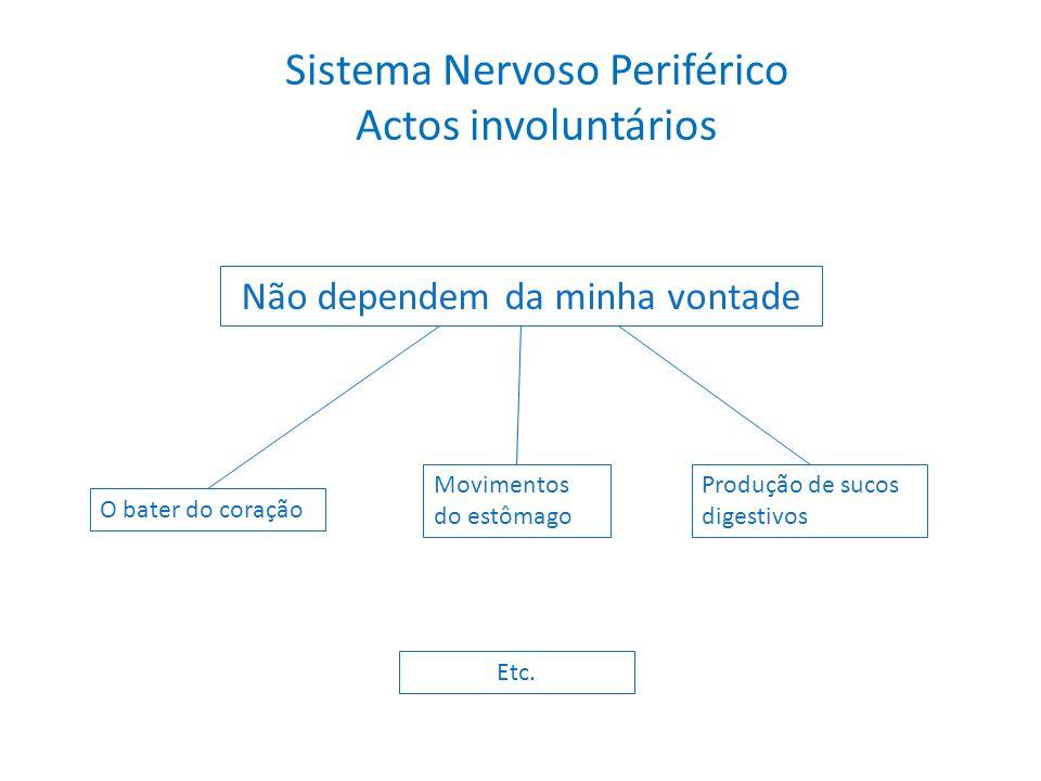 Sistema Nervoso Periférico Actos involuntários