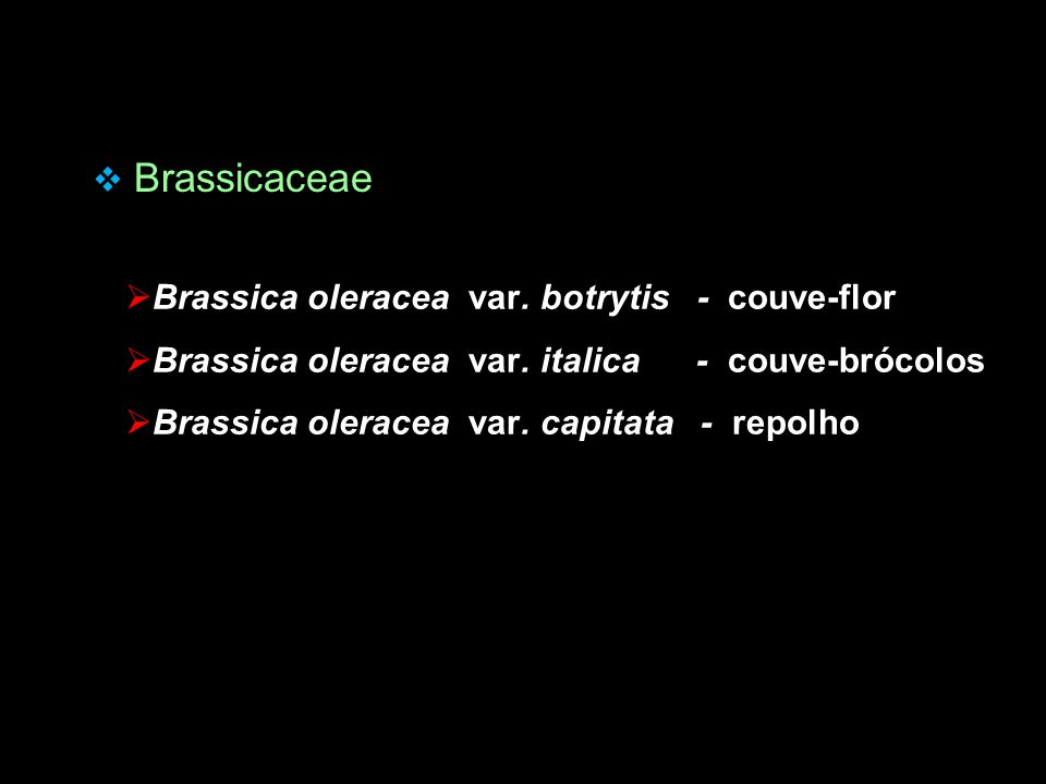 Brassicaceae Brassica oleracea var. botrytis - couve-flor. Brassica oleracea var. italica - couve-brócolos.