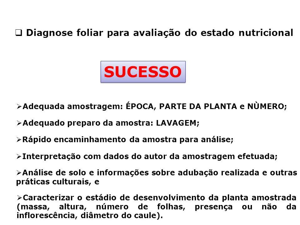 SUCESSO Diagnose foliar para avaliação do estado nutricional