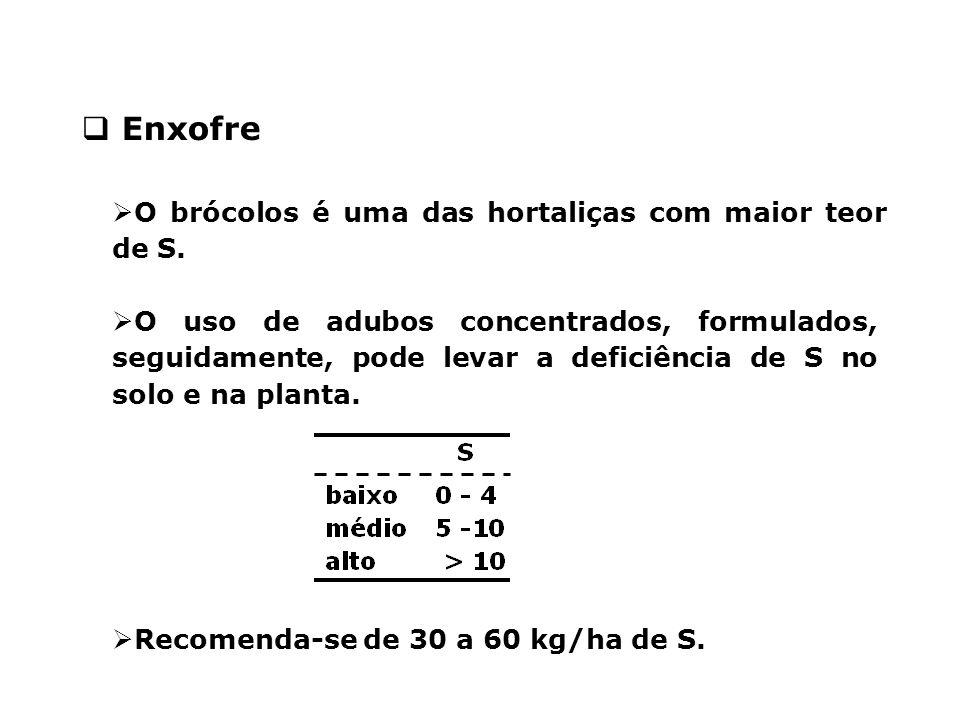 Enxofre O brócolos é uma das hortaliças com maior teor de S.