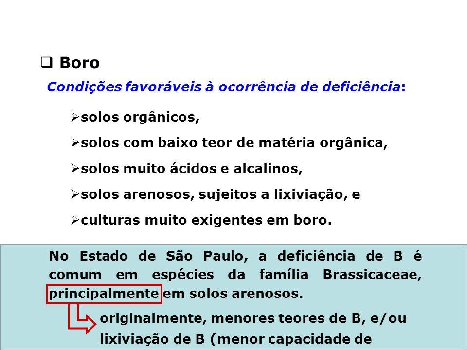Boro Condições favoráveis à ocorrência de deficiência:
