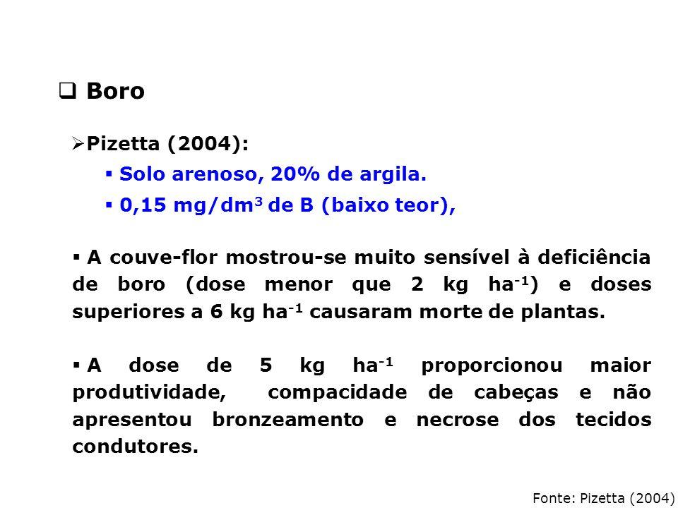 Boro Pizetta (2004): Solo arenoso, 20% de argila.