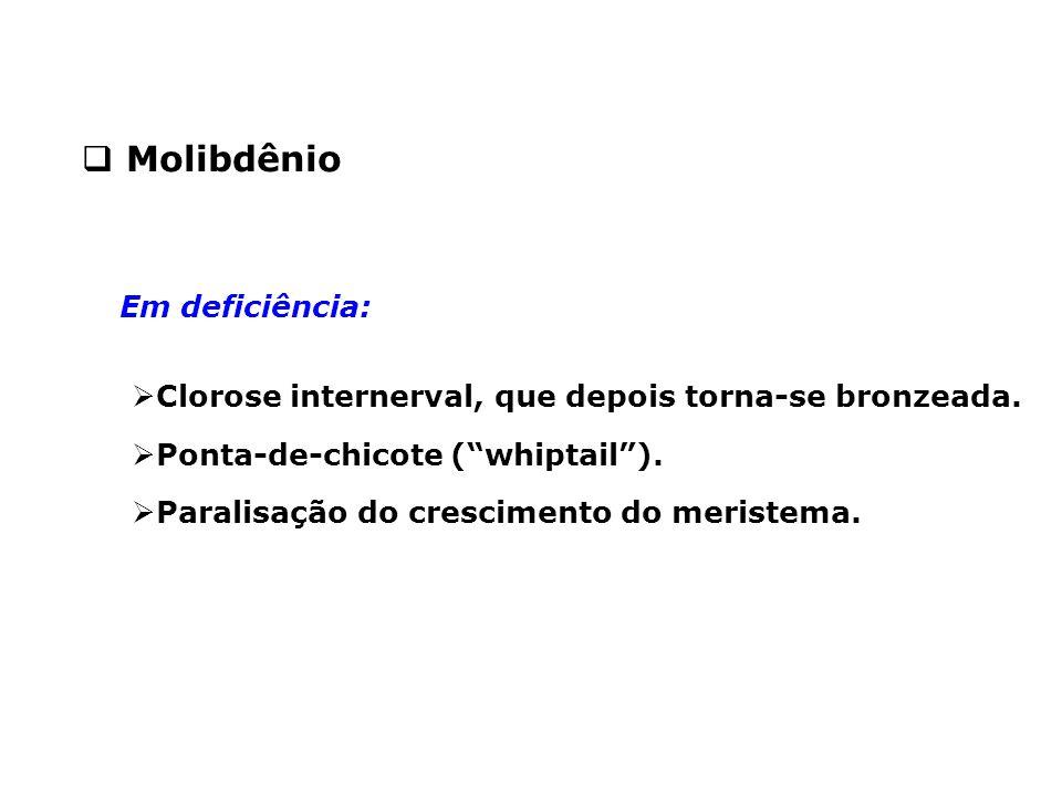 Molibdênio Em deficiência: