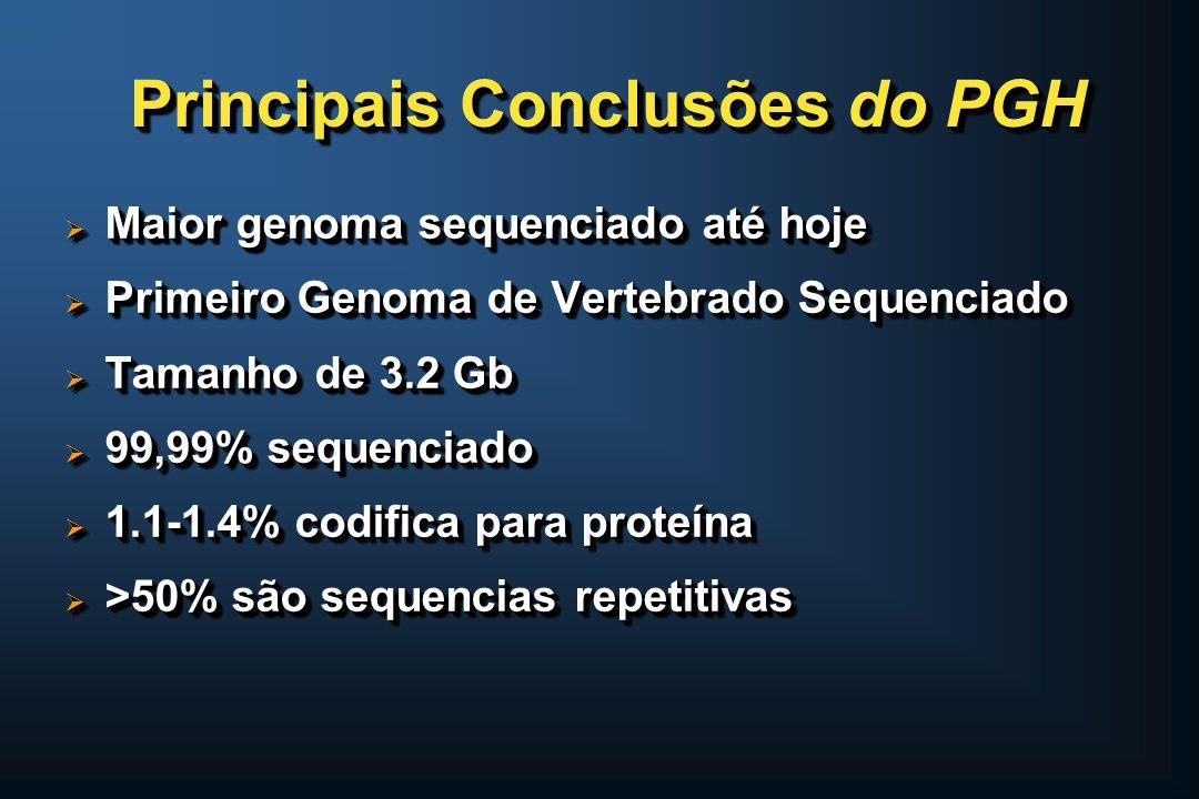 Principais Conclusões do PGH