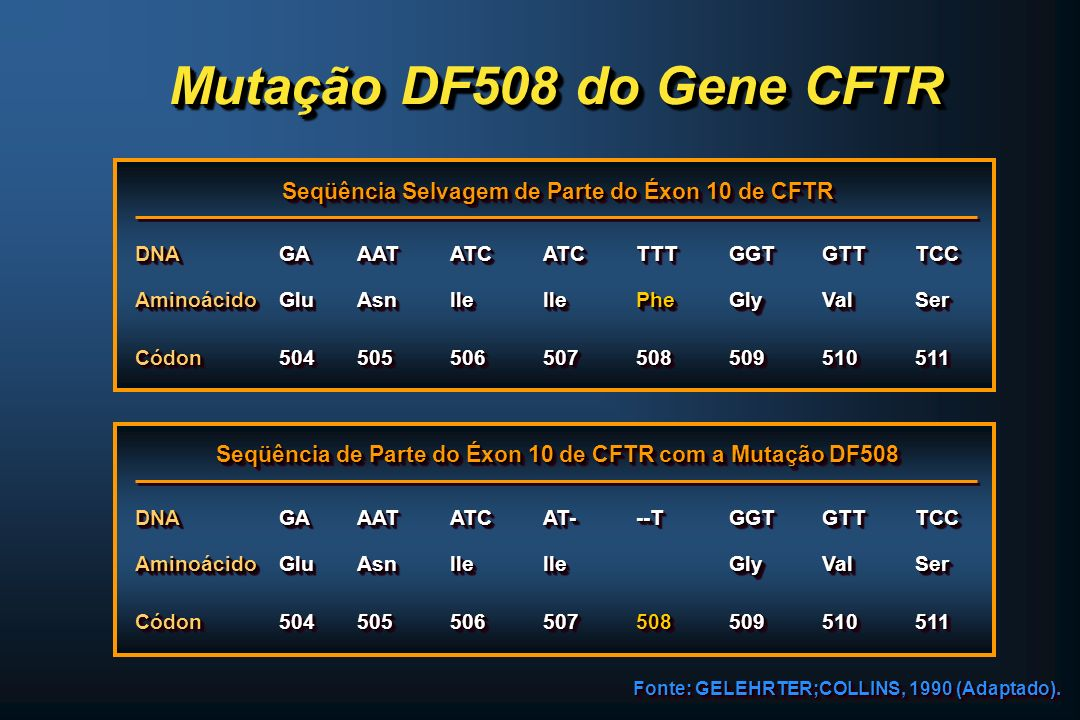 Mutação DF508 do Gene CFTR Seqüência Selvagem de Parte do Éxon 10 de CFTR. DNA. GA. AAT. ATC. ATC.
