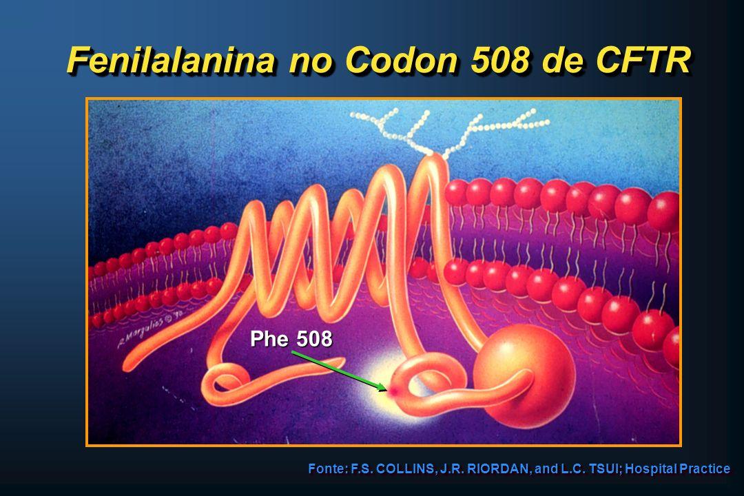 Fenilalanina no Codon 508 de CFTR