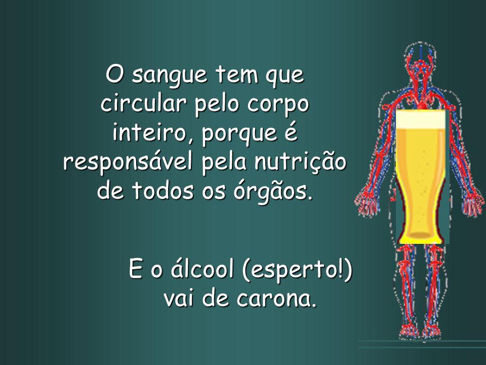 O sangue tem que circular pelo corpo inteiro, porque é responsável pela nutrição de todos os órgãos.