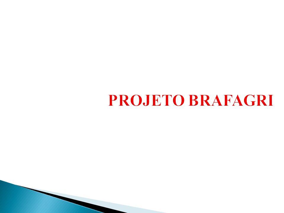 PROJETO BRAFAGRI