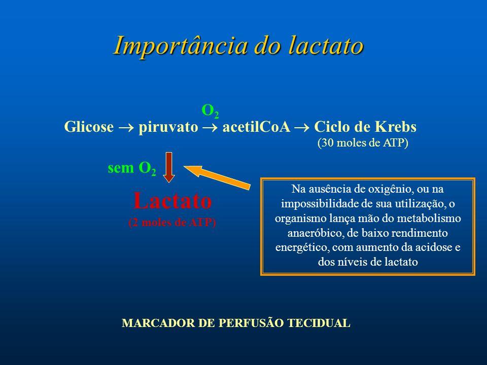 Glicose  piruvato  acetilCoA  Ciclo de Krebs